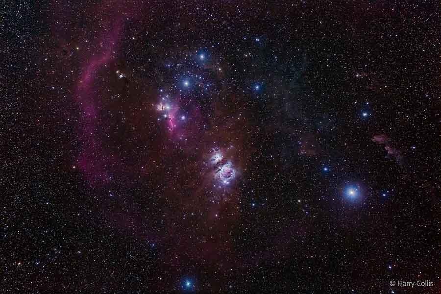 Astrophotographie de la constellation d'Orion par Harry Collis