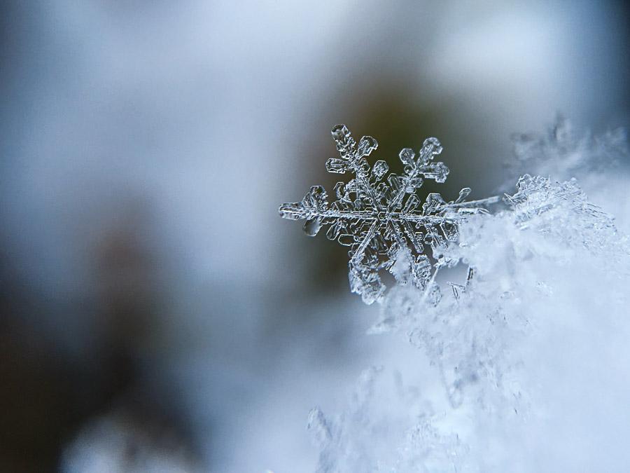 Gros plan d'un flocon de neige par Aaron Burden