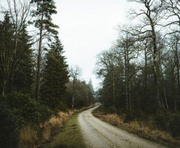 5 conseils pour bien utiliser un objectif grand angle