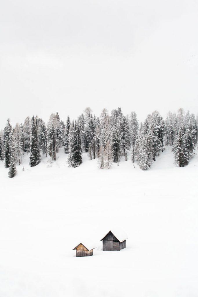 8 conseils pour reussir ses photos d'hiver : la composition