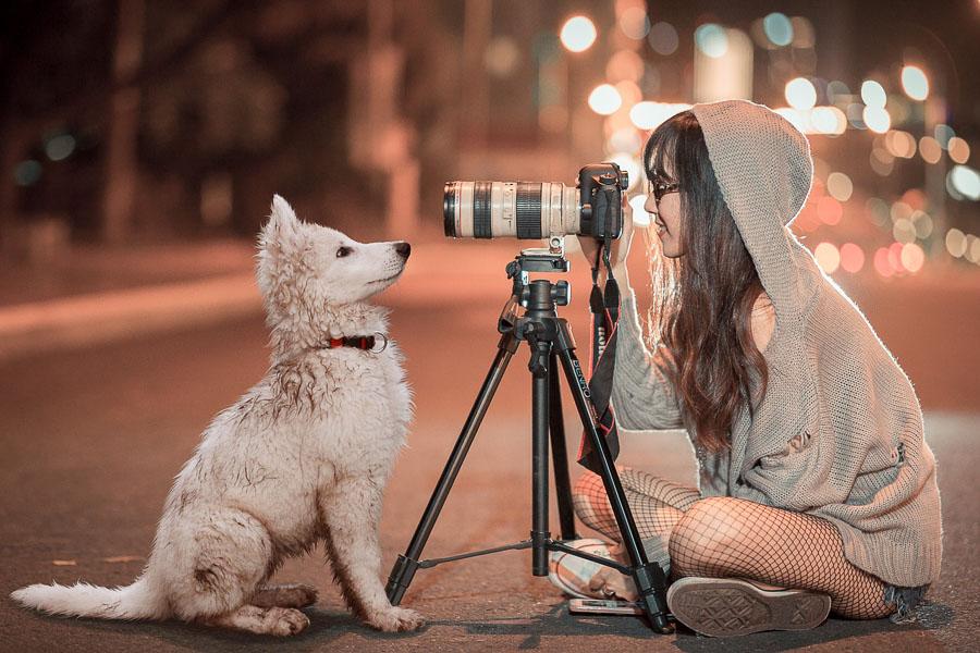 illustration d'une séance photo au trépied avec une femme et un chien