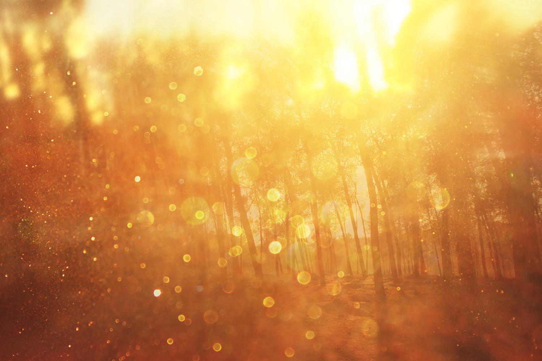 Flare : nature.