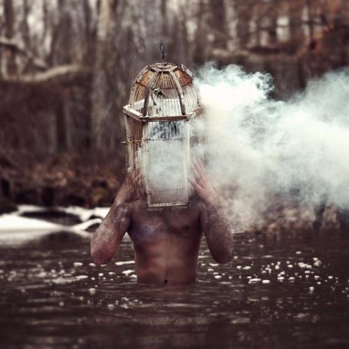 Photo de Nicolas Bruno