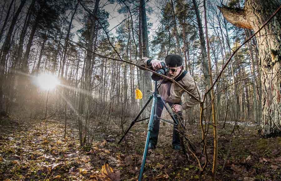 Image d'un photographe nature réalisant une macrophotographie sur trépied au milieu d'une forêt