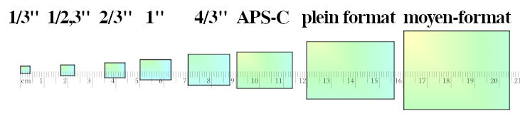 """Les principales tailles de capteurs, du 1/3"""" au moyen-format, avec règle."""