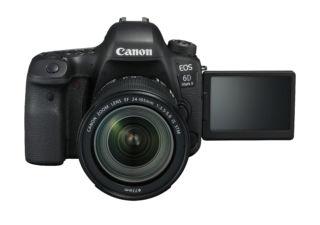 CANON 6D Mark II + EF 24-105mm f/3.5-5.6 IS STM reflex numérique