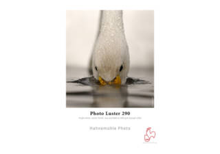 HAHNEMUHLE Photo Luster papier photo 25 feuilles A3 260 gr