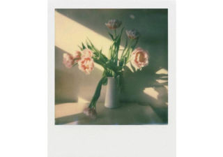 POLAROID film 8 poses Color pour i-Type