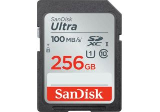 Sandisk carte mémoire SDXC Ultra 100 MB/s 256 Gb