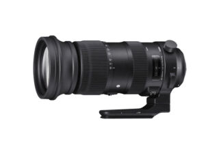 SIGMA 60-600mm F4.5-6.3 DG OS HSM Sports monture NIKON objectif photo